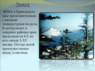 Зима ЗИМА в Приморском крае продолжительная, с низкими температурами воздуха.