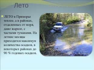 Лето ЛЕТО в Приморье теплое, а в районах, отдаленных от моря, даже жаркое, с