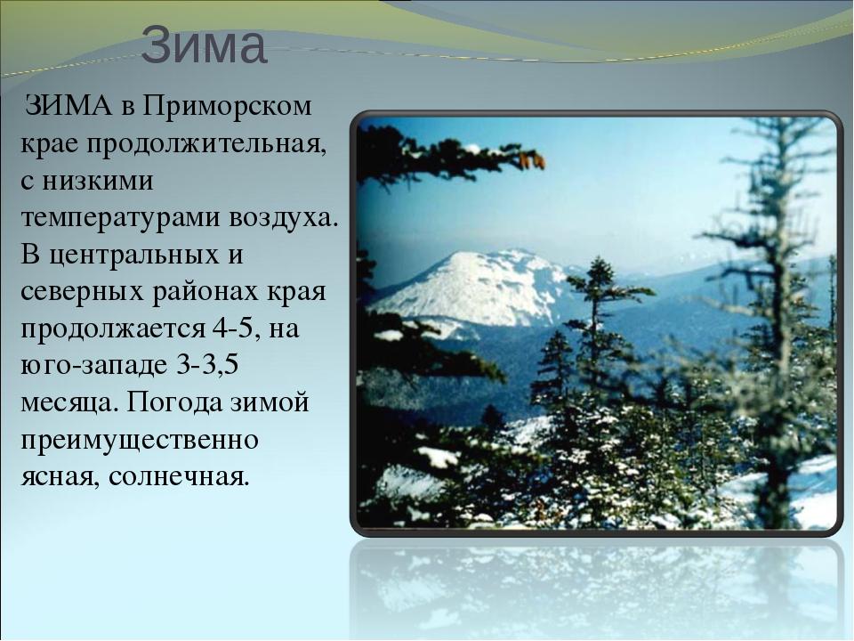 Зима ЗИМА в Приморском крае продолжительная, с низкими температурами воздуха....