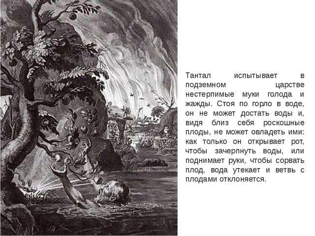 Тантал испытывает в подземном царстве нестерпимые муки голода и жажды. Стоя п...