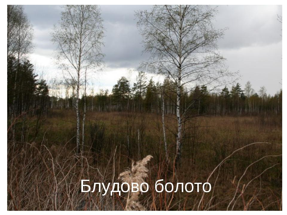 Блудово болото