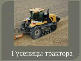 Гусеницы трактора