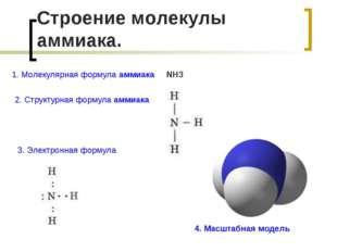 Строение молекулы аммиака. 3. Электронная формула 4. Масштабная модель 1. Мол