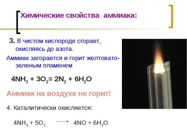 Химические свойства аммиака: 3. В чистом кислороде сгорает, окисляясь до азот...