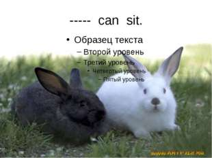 ----- can sit.