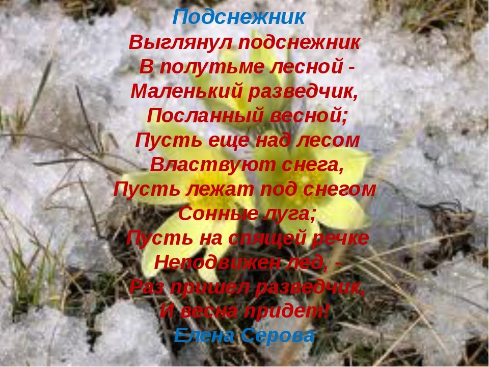 Подснежник  Выглянул подснежник В полутьме лесной - Маленький разведчик, По...
