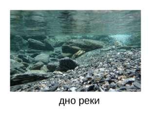 дно реки