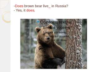 -Does brown bear live_ in Russia? - Yes, it does.