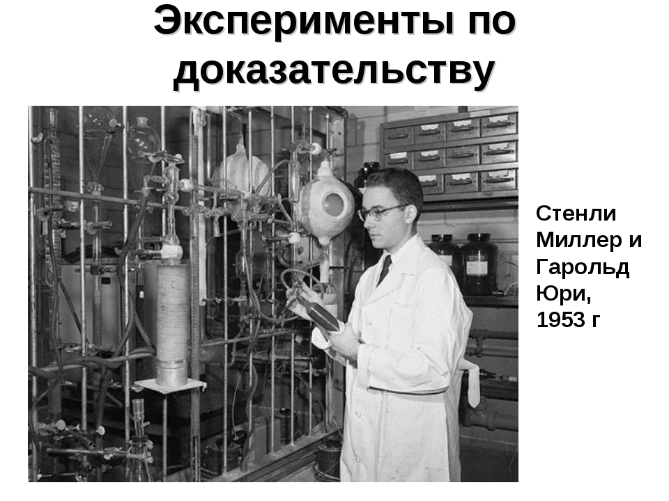 the amino acid experiments of stanley miller in 1953 Stanley miller, under the guidance of professor harold urey, set up the miller-urey experiment to test this hypothesis he included basic chemicals that were present on earth before life began.