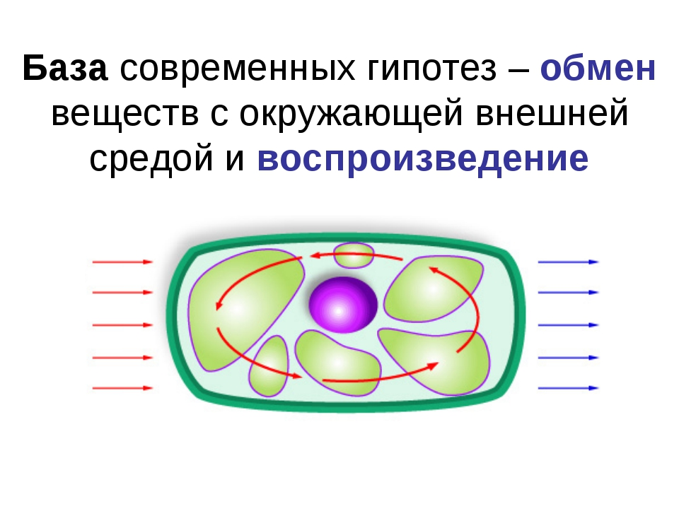 База современных гипотез – обмен веществ с окружающей внешней средой и воспро...