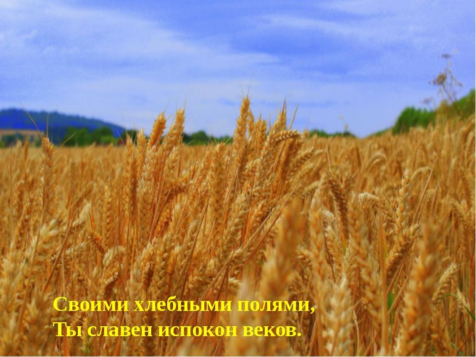 Своими хлебными полями, Ты славен испокон веков.