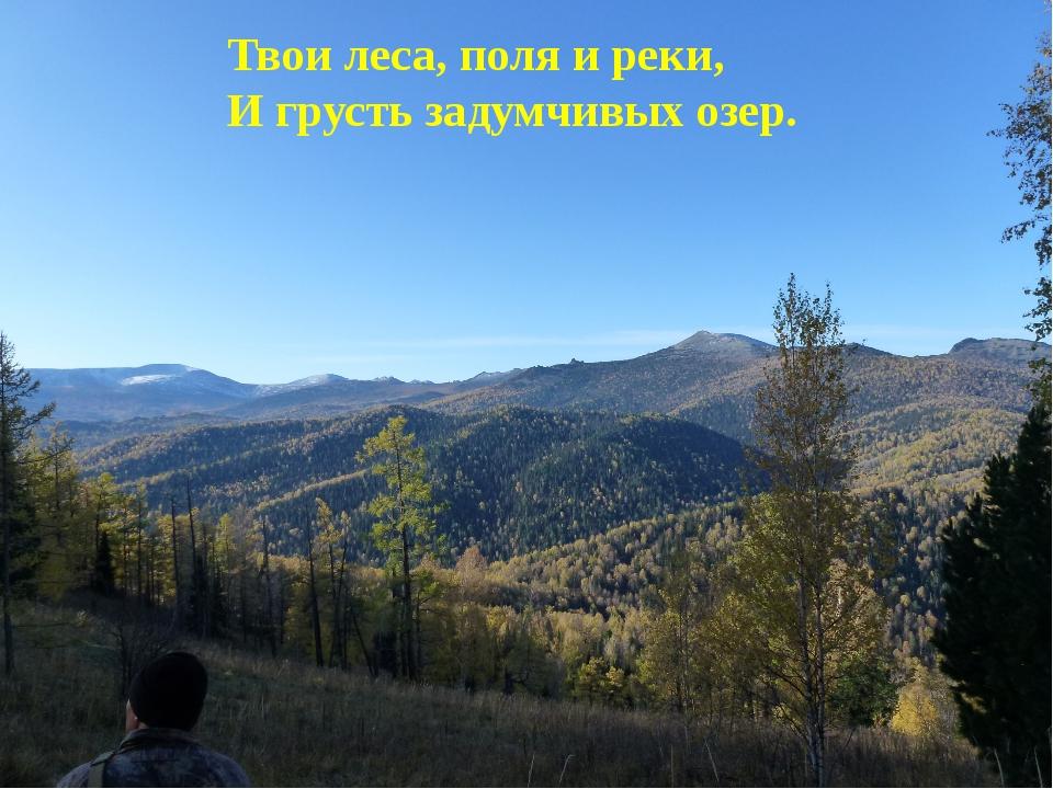 Твои леса, поля и реки, И грусть задумчивых озер.