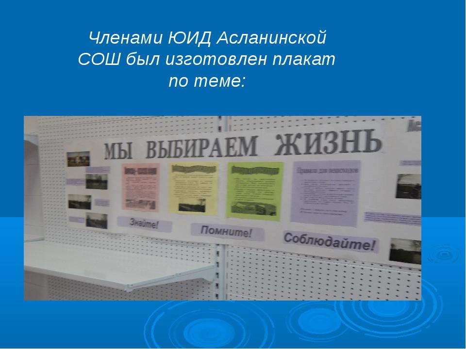Членами ЮИД Асланинской СОШ был изготовлен плакат по теме: