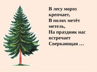В лесу мороз крепчает, В полях метёт метель, На праздник нас встречает Сверка