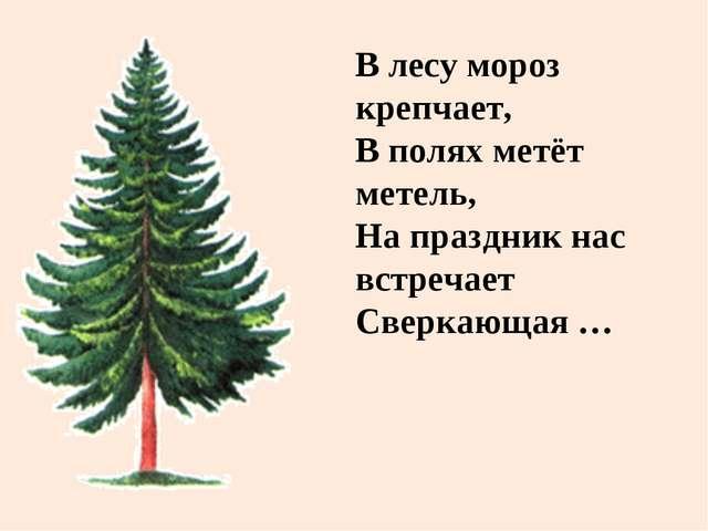 В лесу мороз крепчает, В полях метёт метель, На праздник нас встречает Сверка...