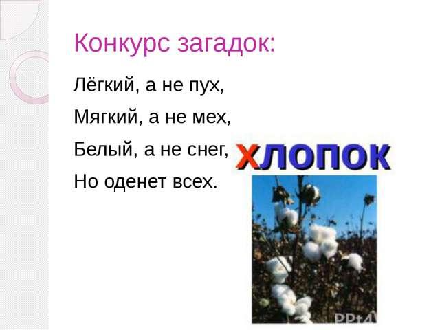 Конкурс загадок: Лёгкий, а не пух, Мягкий, а не мех, Белый, а не снег, Но оде...
