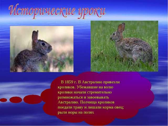 В 1859 г. В Австралию привезли кроликов. Убежавшие на волю кролики начали ст...