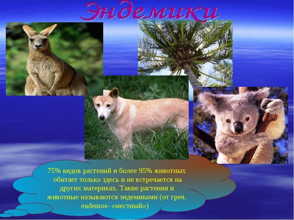 75% видов растений и более 95% животных обитает только здесь и не встречается...
