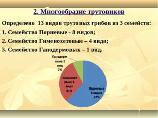 2. Многообразие трутовиков Определено 13 видов трутовых грибов из 3 семейств: