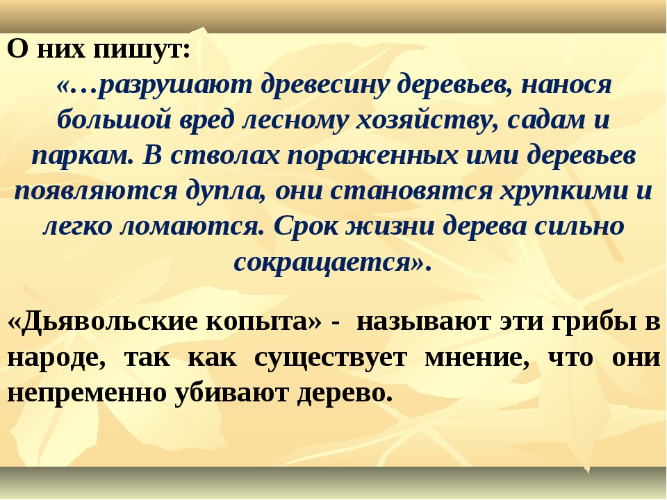 О них пишут: «…разрушают древесину деревьев, нанося большой вред лесному хозя...
