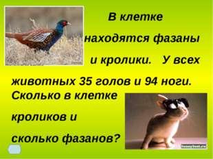 В клетке находятся фазаны и кролики. У всех животных 35 голов и 94 ноги. Ско