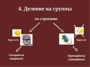 4. Деление на группы по строению Эукариоты (ядерные) Прокариоты (доядерные) Я