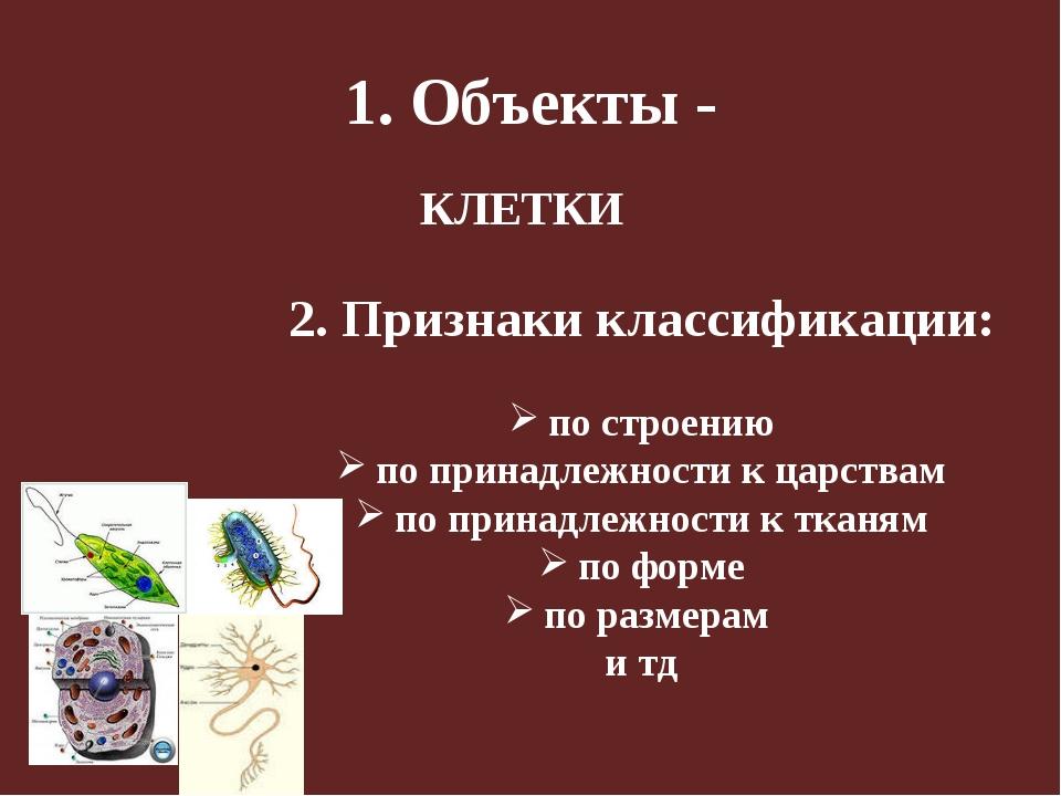 1. Объекты - 2. Признаки классификации: по строению по принадлежности к царст...