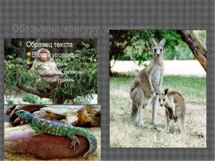 Обезьяны, кенгуру, шипохвост