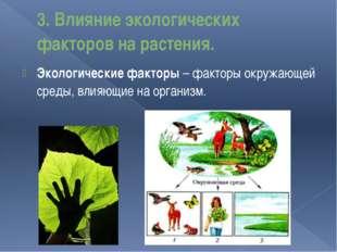 3. Влияние экологических факторов на растения. Экологические факторы – фактор