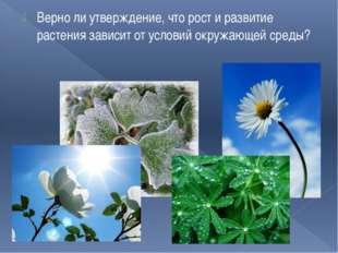 Верно ли утверждение, что рост и развитие растения зависит от условий окружаю