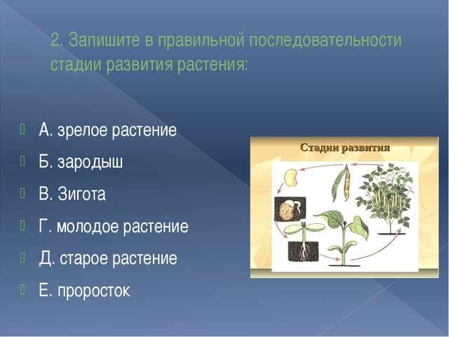 2. Запишите в правильной последовательности стадии развития растения: А. зрел...