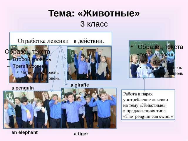 Тема: «Животные» 3 класс Отработка лексики в действии. Работа в парах употреб...