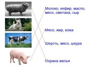 Молоко, кефир, масло, мясо, сметана, сыр Мясо, жир, кожа Шерсть, мясо, шкура