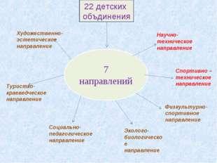 7 направлений Художественно- эстетическое направление Туристко-краеведческое
