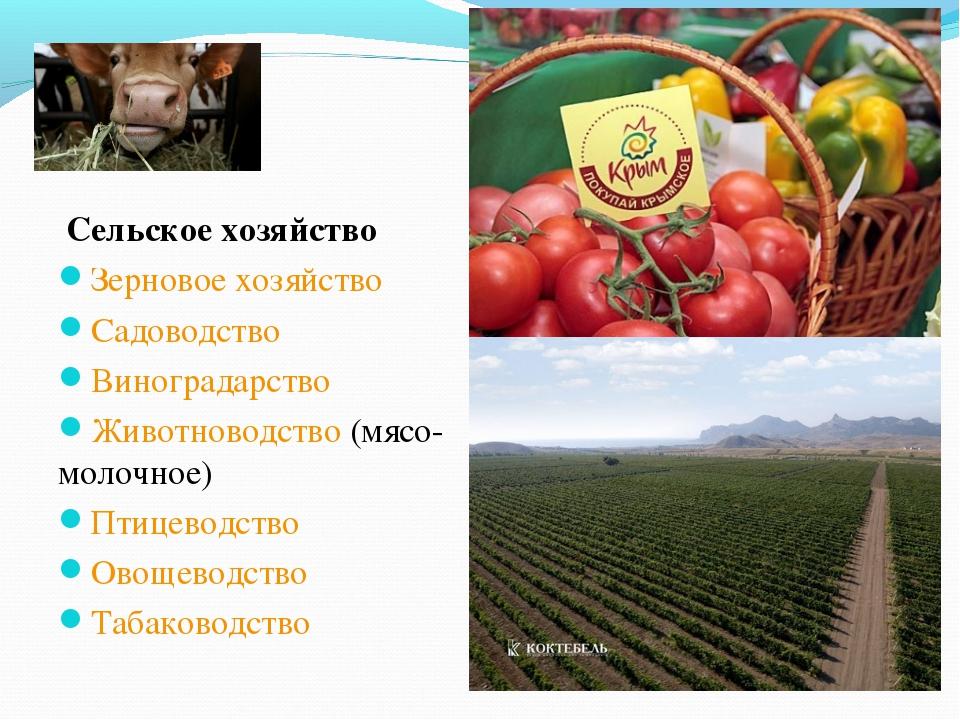 Сельское хозяйство Зерновое хозяйство Садоводство Виноградарство Животноводс...