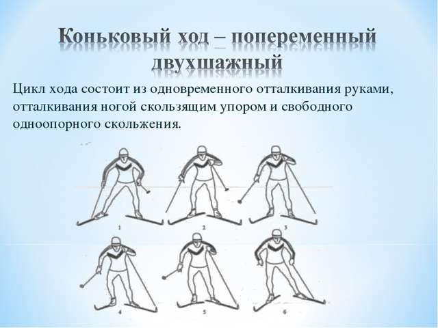 Цикл хода состоит из одновременного отталкивания руками, отталкивания ногой с...
