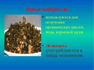 Бурые водоросли используются для получения органических кислот, йода, кормово