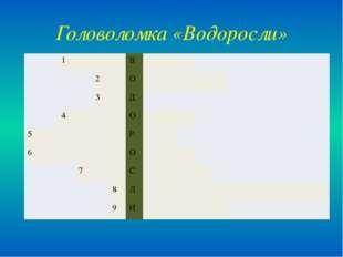 Головоломка «Водоросли» 1 В 2 О 3 Д 4 О 5 Р 6 О 7 С 8 Л 9 И