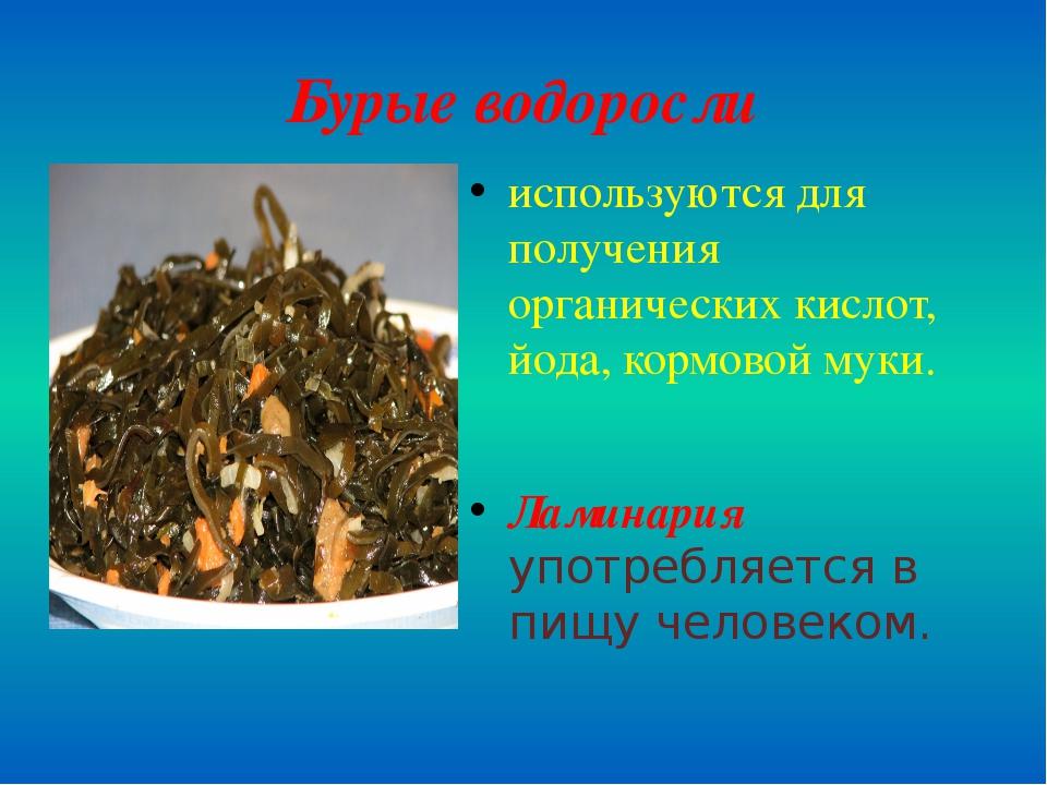 Бурые водоросли используются для получения органических кислот, йода, кормово...