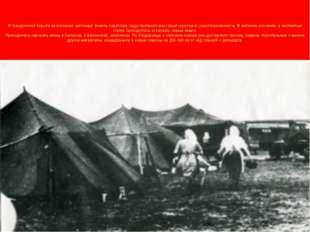 . В грандиозной борьбе за освоение целинных земель советские люди проявили ма