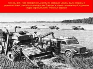 С весны 1954 года развернулись работы по распашке целины. Были созданы и уком