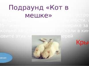 Главная Л.Н. Толстой сказал о стихотворении М.Ю. Лермонтова «Бородино» такие