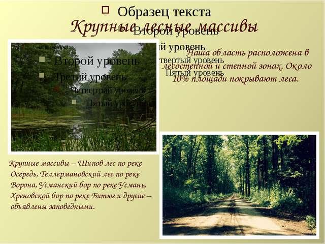 Крупные лесные массивы Наша область расположена в лесостепной и степной зонах...