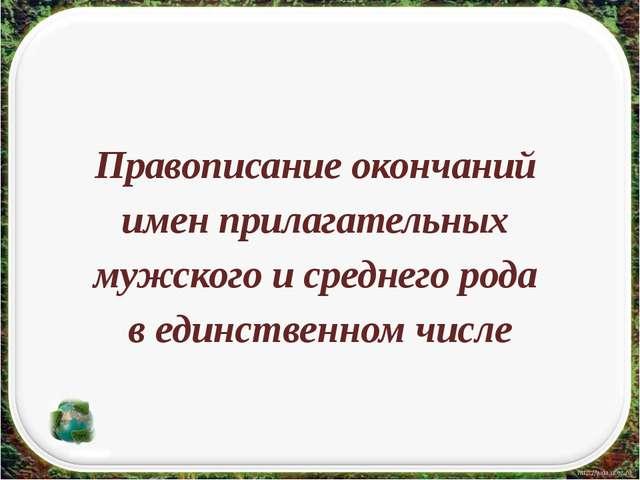 Правописание окончаний имен прилагательных мужского и среднего рода в единст...