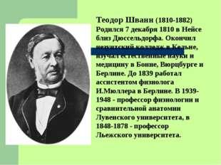 Теодор Шванн (1810-1882) Родился 7 декабря 1810 в Нейсе близ Дюссельдорфа. Ок