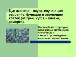 Цитология – наука, изучающая строение, функции и эволюцию клеток (от греч. ky