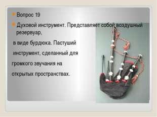 Вопрос 19 Духовой инструмент. Представляет собой воздушный резервуар, в виде