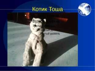 Котик Тоша
