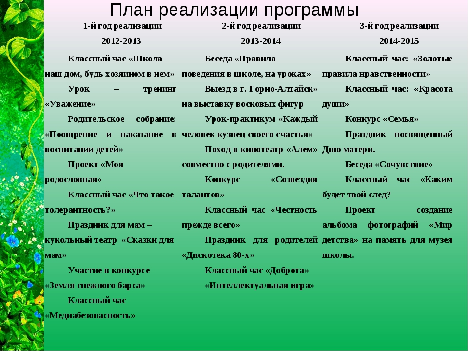 План реализации программы 1-й год реализации 2012-2013 2-й год реализации 20...