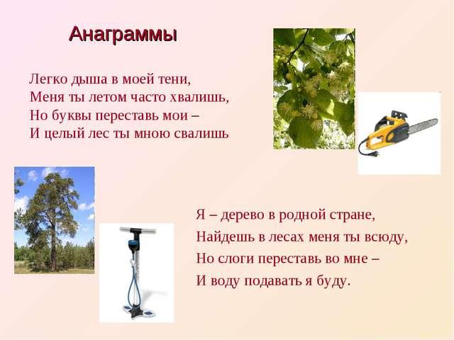 Я – дерево в родной стране, Найдешь в лесах меня ты всюду, Но слоги переставь...
